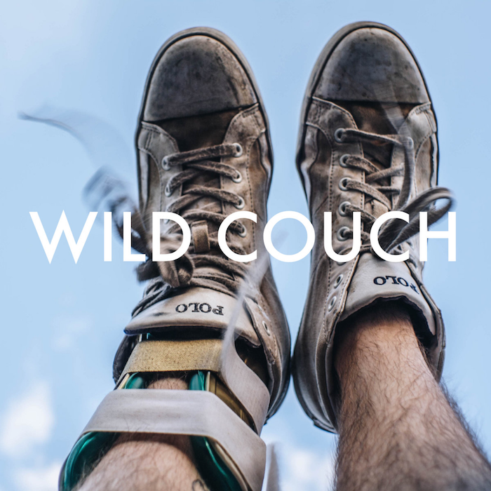WILD COUCH SECTIONAL HEALING album art